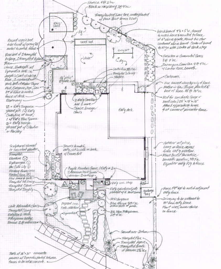 Drafted plan by Santa Barbara educated gardener and plant savvy landscape architect Katherine Farhadian
